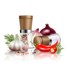 spices vegetables composition vector image vector image