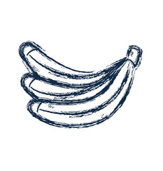figure delicious banana fruit to healthy life vector image vector image