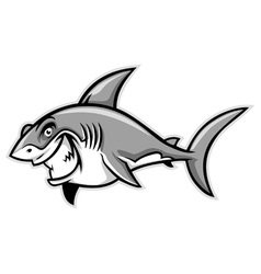 great white shark smiling vector image vector image