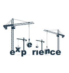 Construction cranes builds experience word vector