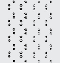 footprint of paws vector image