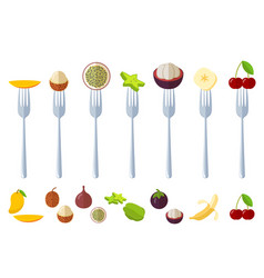 fresh juisy raw fruits on forks vector image