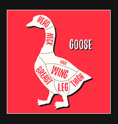 goose meat cutting charts vector image