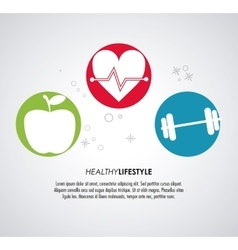 Heart apple and weight icon Healthy lifestyle vector