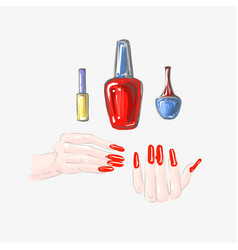 nail art and nail polish set beautiful female vector image