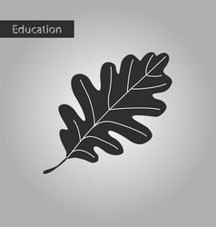 Oak leaf black and white style icon vector