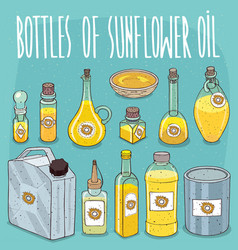 set of containers with sunflower seed oil vector image