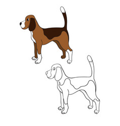 Cute cartoon contour beagle isolated on white vector