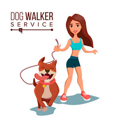 dog walking service pet care exercising vector image vector image