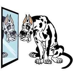 cartoon great dane dog vector image