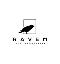 crow raven logo design vector image