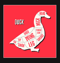 Duck meat cutting charts vector