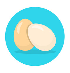 eggs flat icon chicken egg vector image