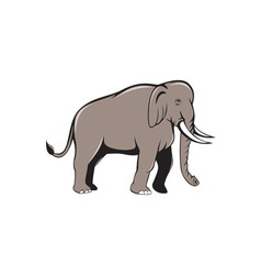 Indian Elephant Side View Cartoon vector image vector image