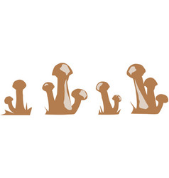 silhouettes of the mushrooms brown on a white vector image