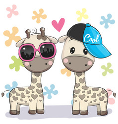 two cute giraffes with glasses and cap vector image