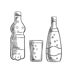 Bottles and glass of sweet soda drink vector image