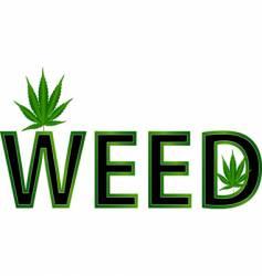 weed leaf illustration vector image vector image