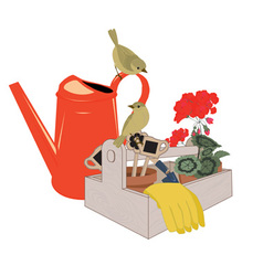 garden tools and flowers vector image vector image