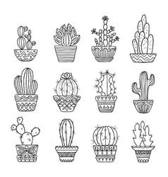 hand drawn sketch cactus set vector image