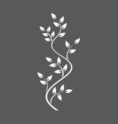 natural ornamentation with ivy on dark background vector image