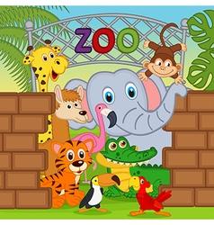 Animals at zoo vector