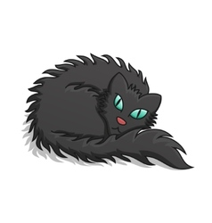 Black Fluffy Cat vector image