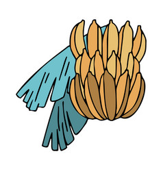 Bunch bananas with leaves in doodle style vector