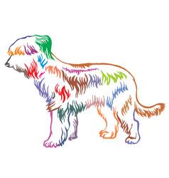 colorful decorative standing portrait of briard vector image