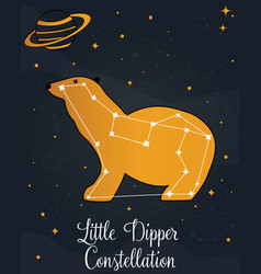 Constellation little dipper star in night sky vector