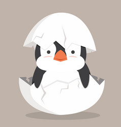 cute bapenguin fat hatched in egg vector image