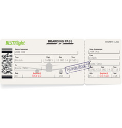 green pattern of airline boarding pass vector image