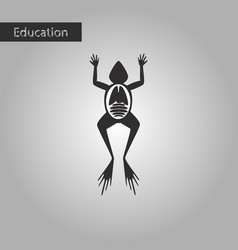 frog biology black and white style icon vector image