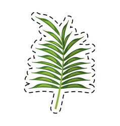 cartoon leave palm tropical flora vector image vector image