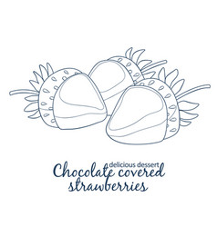 chocolate covered strawberries icon isolated on vector image