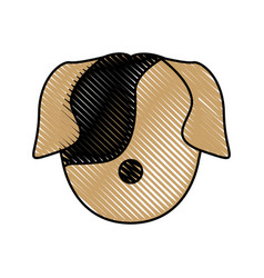 Head dog animal pet domestic image vector