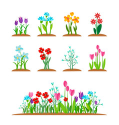 spring garden flowers icon set forest flower vector image