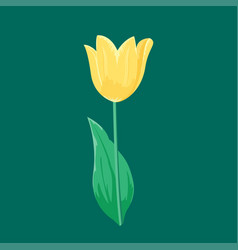 vintage yellow tulip flower can be used as vector image vector image