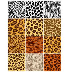 animal seamless pattern set mammals fur vector image