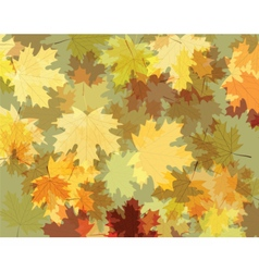 Autumn background with maple leaves vector