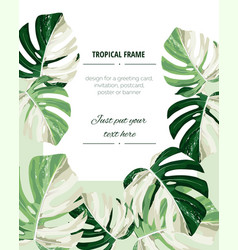 botanical vertical banners with tropical monstera vector image