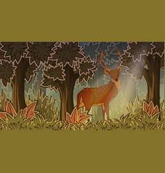 Deer in forest cartoon style vector