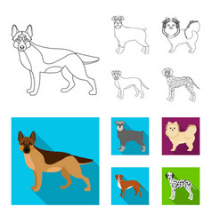 Dog breeds outlineflat icons in set collection vector