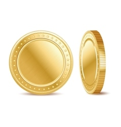 empty golden finance coin on white background vector image