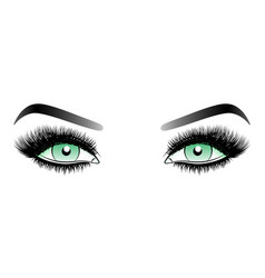 green woman eyes with long false lashes with vector image