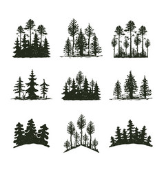 Tree outdoor travel black silhouette coniferous vector