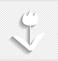 tulip sign white icon with soft shadow on vector image