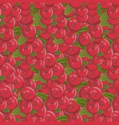 Vintage cranberry seamless pattern vector