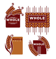 whole grain product isolated emblems set with ripe vector image