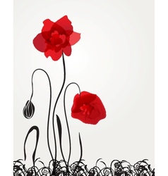 Spring card with beauty poppies vector image vector image